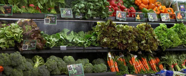 Нитраты и кишечная палочка: итоги проверки зелени в российских магазинах
