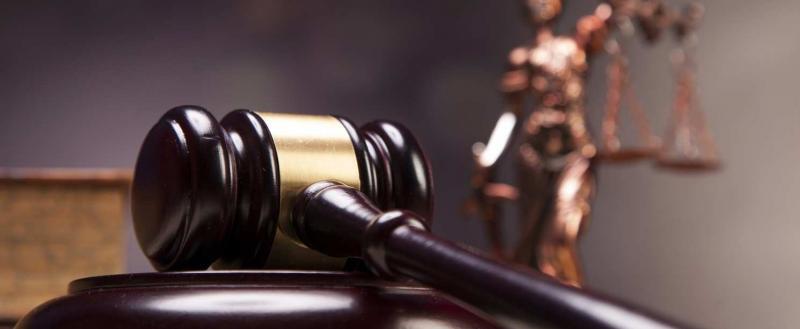 Обжалованию подлежит. В суд направлена апелляция на решение по делу приемной матери Степы Кукина