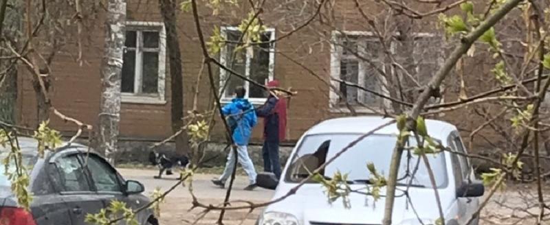 Птичий скандал: вологжан возмутили подростки, пытающиеся приманить и убить голубей