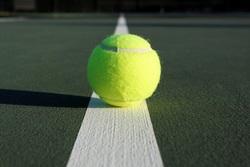 Парабадминтонист - третий в России, теннисистка - вторая