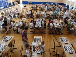 Баскетболист - в сборной России, в Саратове - шахматный фестиваль