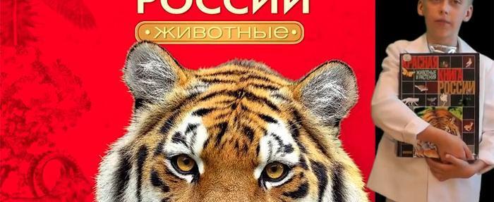 Школьник из Бабаево за победу в конкурсе получит необычный приз – встречу с Тигром