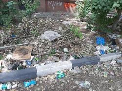 Житель пожаловался на мусор во дворе и отписки чиновников