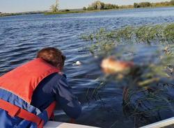 Найдено тело четвертого рыбака из перевернувшейся у Саратовской ГЭС лодки