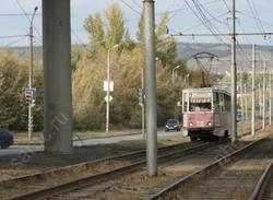 Ветки на проводах остановили движение трамваев