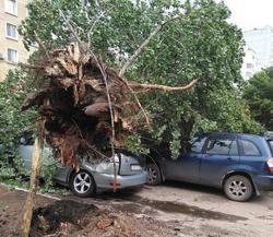 Мэр предупредил о возможном повторении урагана