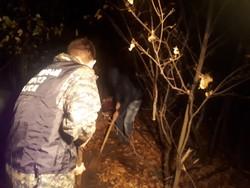 Тело пропавшего в июле горожанина найдено в лесопосадках