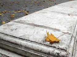 В Саратове - холодно, дождь, ветер