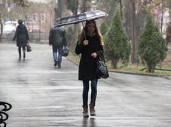 Прогнозируют небольшие дожди