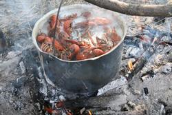 Разжигателям костров в лесах грозит штраф от 4 до 20 тысяч