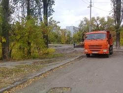 На встрече с чиновниками обсудят вырубку деревьев в парке