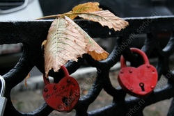 Ожидаются дождь и похолодание до нуля